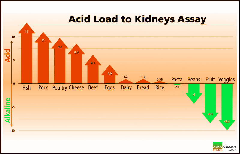 Acid Load to Kidneys Assay Chart